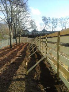 Baumschutz auf Baustellen Baumpflege Stock